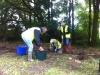 Bulb Planting 2015 1