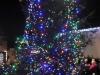 2017-12-02 christmas tree 01