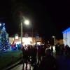 village-christmas-tree-2018 (1)