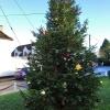 village-christmas-tree-2018 (3)