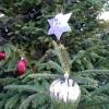 village-christmas-tree-2018 (4)