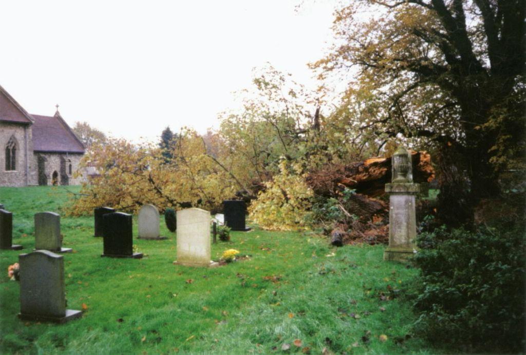 fallen-tree-in-church-yard-oct-2002