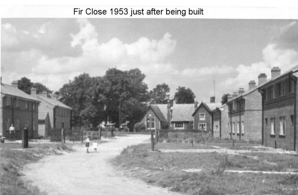 fir-close-just-after-being-built-1953