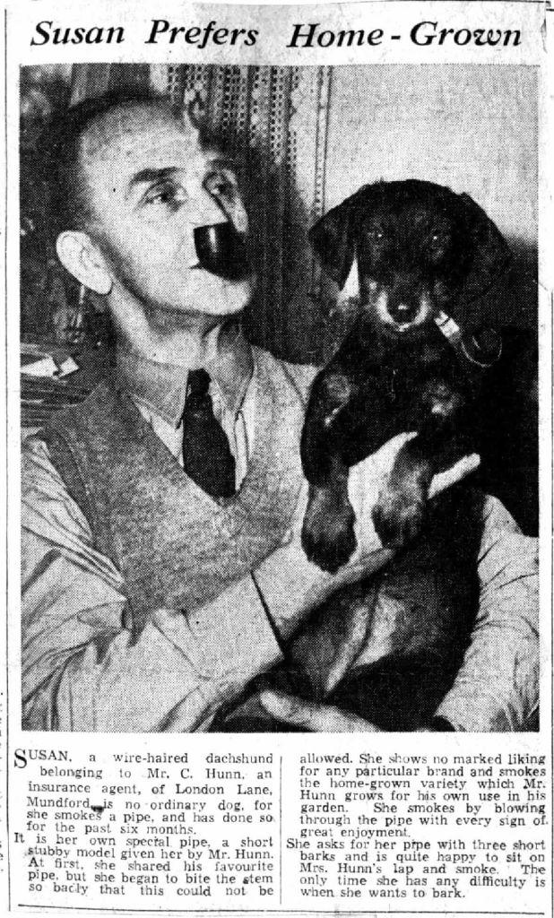 susan-the-smoking-dog
