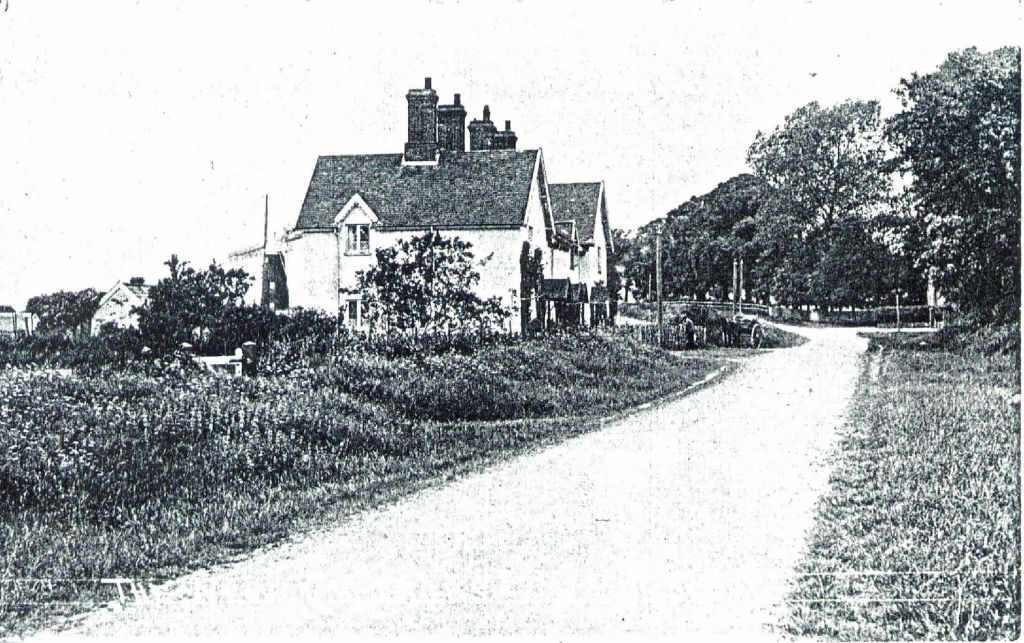 the-new-cottages